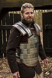 Viking Armour - Polished Steel, M/L