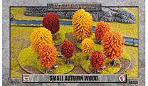 Small Autumn Wood (x1)