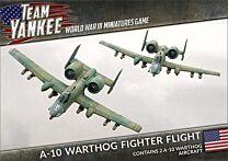 A-10 Warthog Fighter Flight